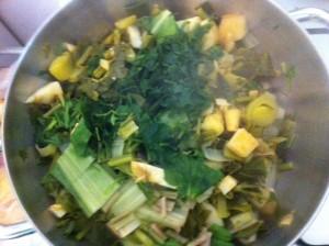 תבשיל ירוק עם שורשים